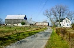 barns-prince-edward-county-ontario-series-2-colour-02.jpg