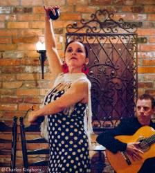 01-flamenco-toronto-ontario-embrujo-flamenco-luisa-de-ronda.jpg