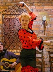 07-flamenco-toronto-ontario-embrujo-flamenco-la-mari.jpg