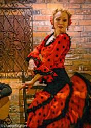 10-flamenco-toronto-ontario-embrujo-flamenco-la-mari.jpg