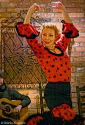11-flamenco-toronto-ontario-embrujo-flamenco-la-mari.jpg