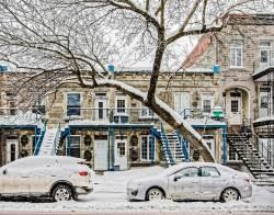 05-montreal-architecture-street-scenes-urban-fine-art-snowfall-free-parking.jpg
